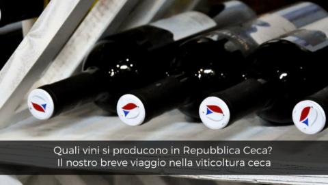 Quali vini si producono in Repubblica Ceca: breve viaggio nella viticoltura ceca