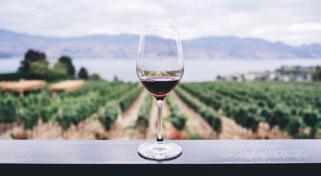 L'enoturismo, fenomeno in crescita nel nostro Paese, tra le destinazioni più ambite a livello mondiale dai winelovers