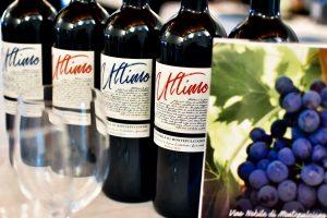 Winetasting Preganziol Azienda Agricola Buracchi.jpg
